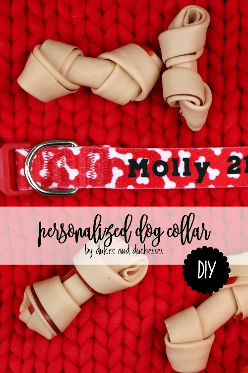DIY Personalized Dog Collar