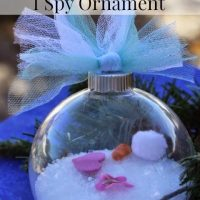 Frozen Inspired I SPY Ornament