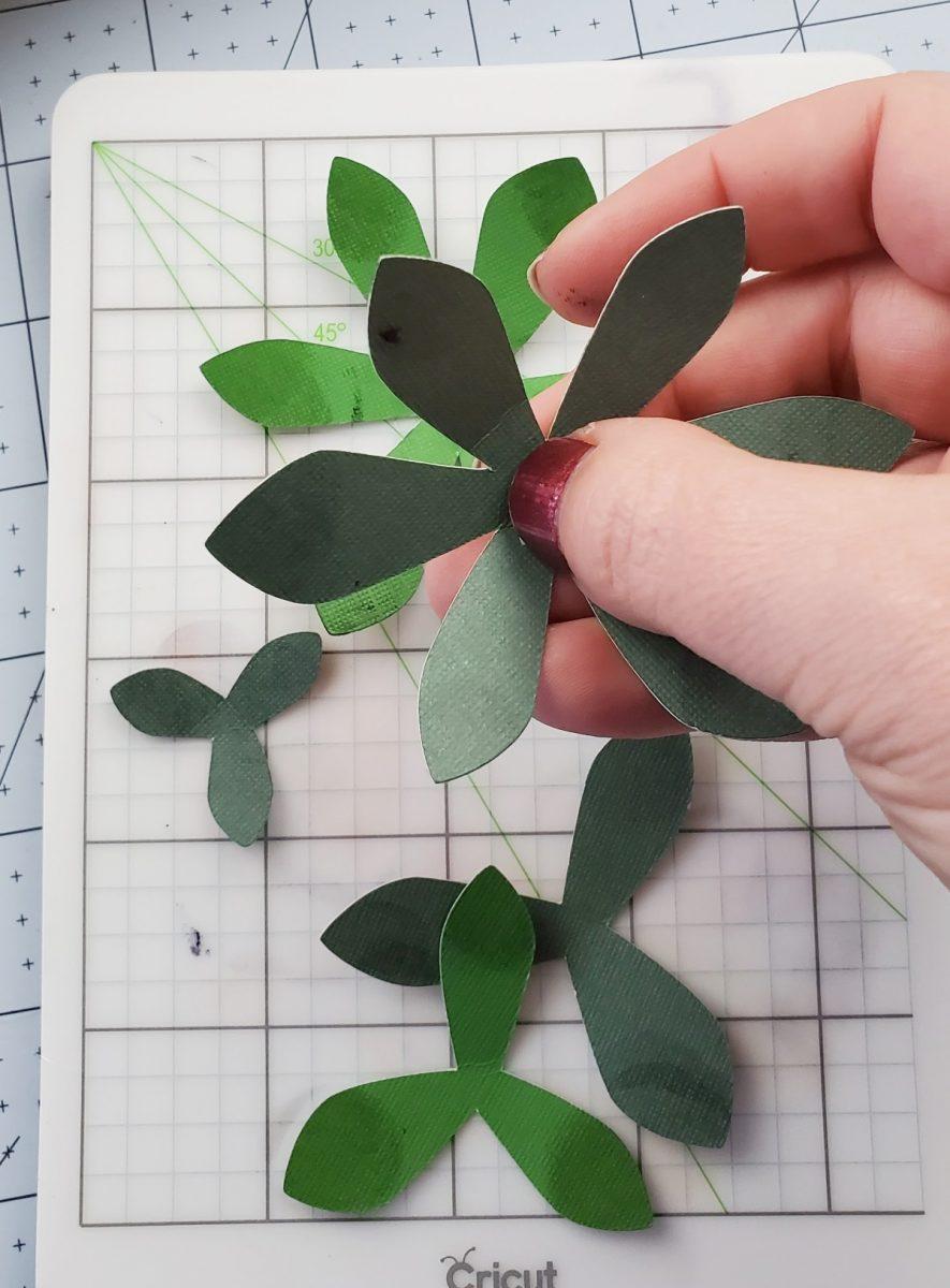 putting together cricut succulent